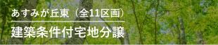 建築条件付宅地分譲